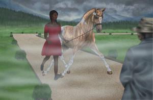 Pony Olympics Vet Check-  Boogieman (048)