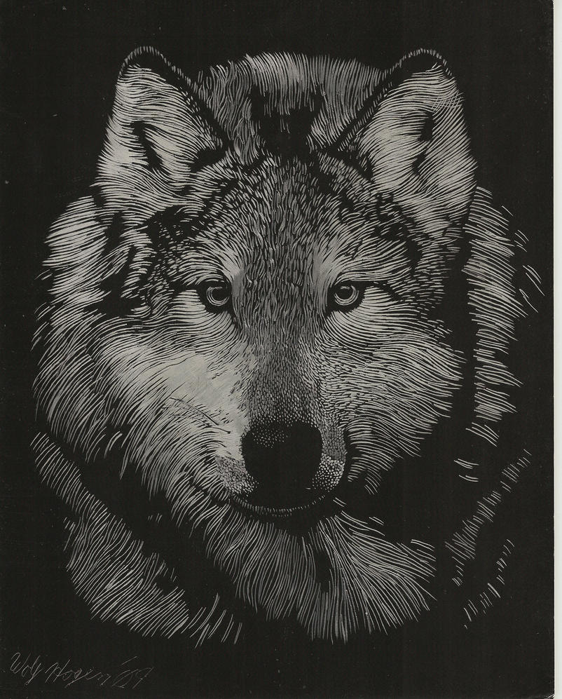 Foil etched wolf by wolfhogen