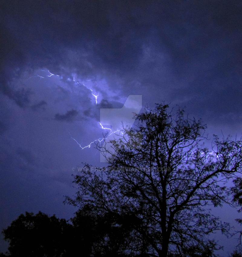 Midnight Storm by wolfhogen