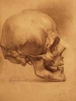 human anatomy 8 by IvanLaliashvili
