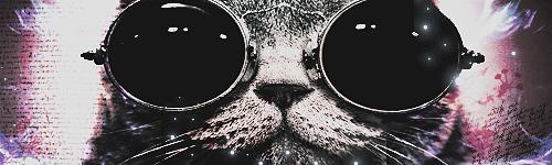 +CatTag by Dazztie