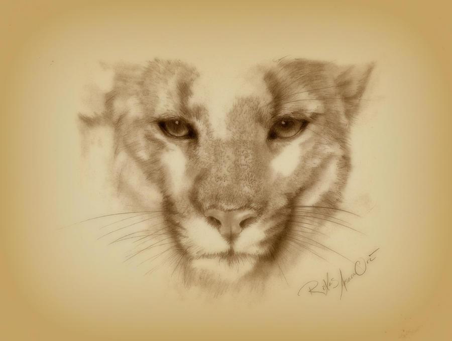 Puma by RoXas-AmaraOri