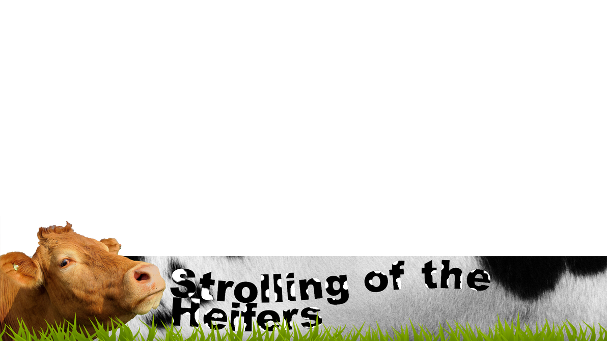 Strolling of the Heifers (Lower Third Graphic) by Peekofwar