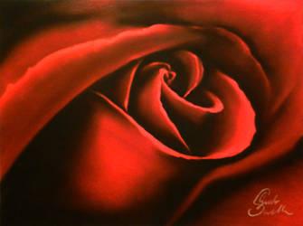 Rosa (Rose) by MrWhiteG