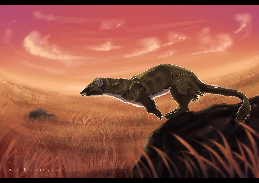 Sunset Jump - by Singarl by SEMC