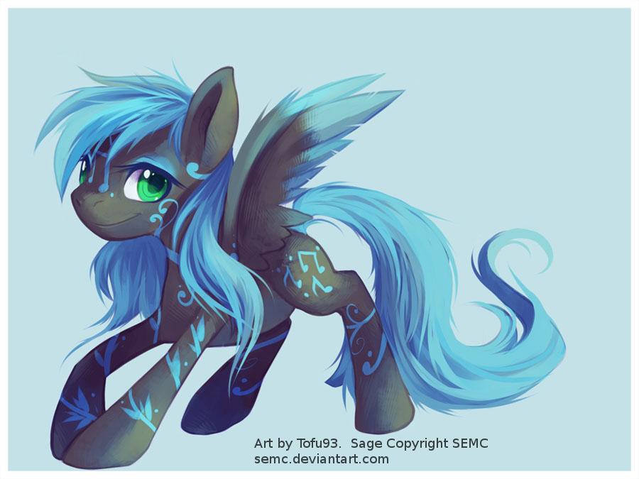 Sage - Pegasus Pony by Tofu93 by SEMC