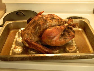 Orange Sage Turkey Thanksgiving 2015