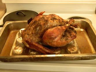 Orange Sage Turkey Thanksgiving 2015 by SEMC