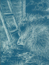 The Porcupine and The Ladder by ArtbySandiJohnson