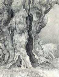 Ancient Wood by ArtbySandiJohnson