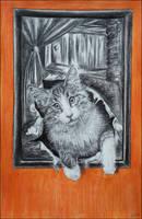 Cat by hheleri