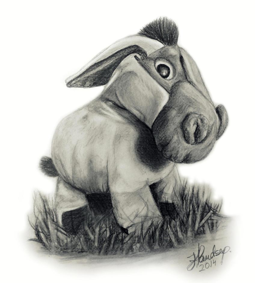 Donkey by hheleri