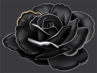 mesh black rose by mikrocosmus