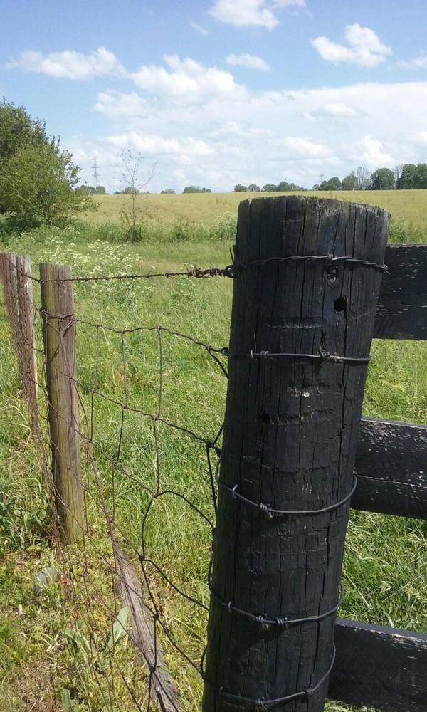 fencing by dward0515