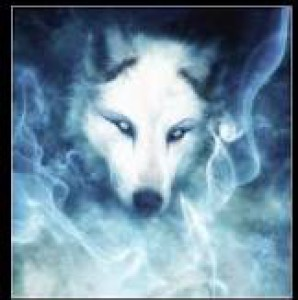 Shannarawolf's Profile Picture