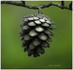 Pine 'Pin' by malakoutass