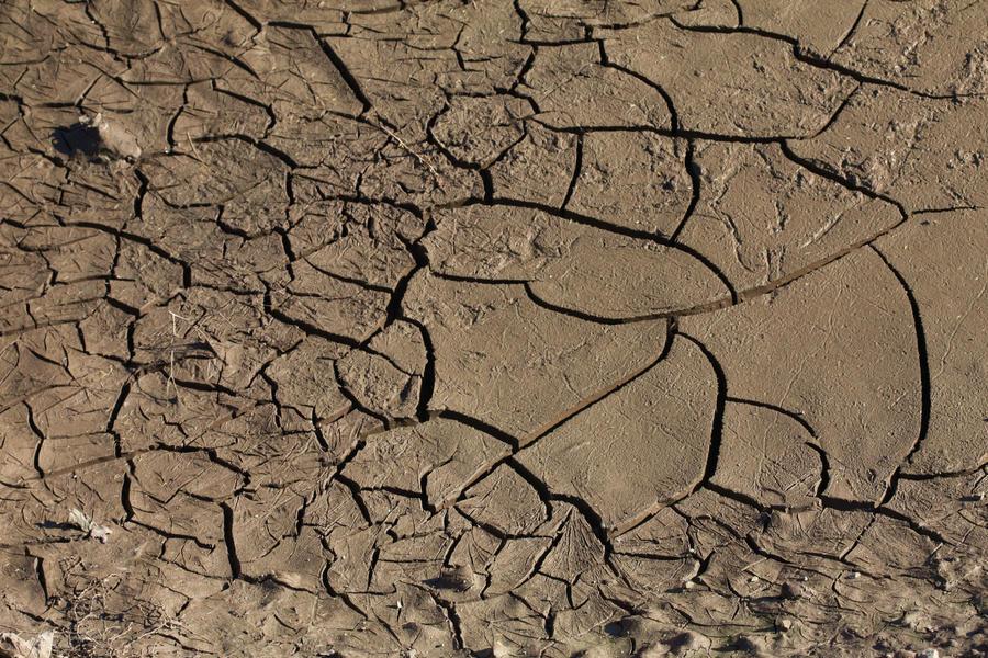 Cracked Mud by woodythrower