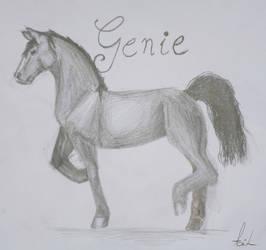Genie .:Gift:. by xAcorn