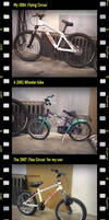 Two bikes - one vision