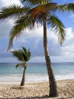 Trip to Hispaniola 2 by cypher7