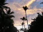 Trip to Hispaniola 8