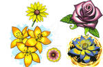 Flower Flash Sheet