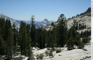 Yosemite 11 view Half Dome by RoonToo