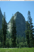 Yosemite 14 meadow by RoonToo