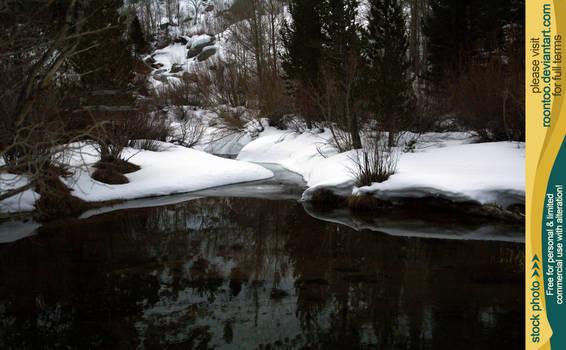 Pond in winter 1