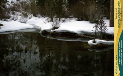 Pond in winter 2