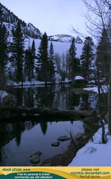 Pond in winter 3