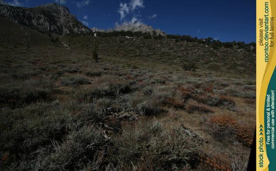 Sierra Nevada 05 by RoonToo