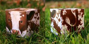 Cow-Cube