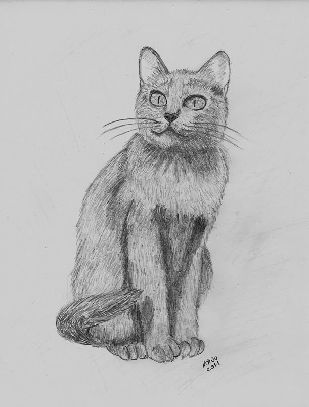 Cat B Day by MaJuSaBe