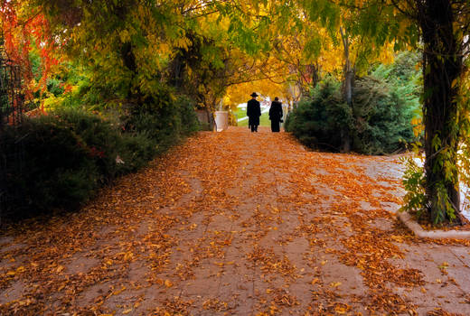Autumn in Jerusalem