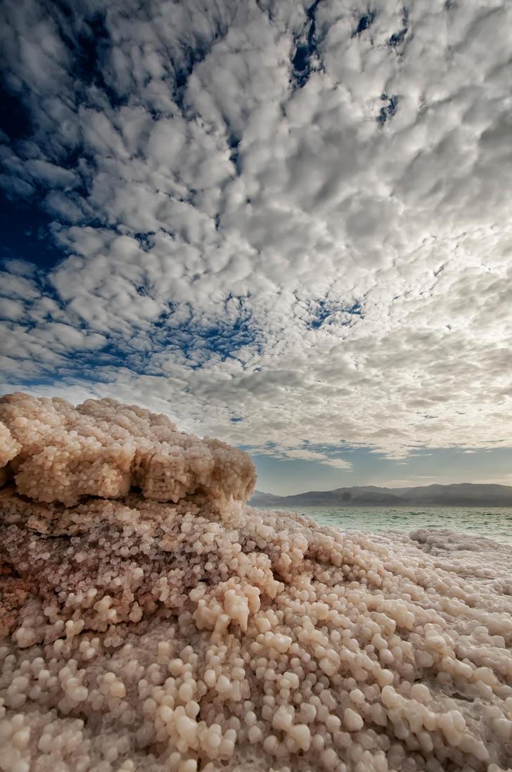 Salt Symphony by DaniBabitz