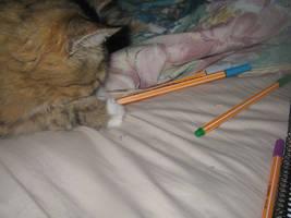kitty likes drawing by dragonkan