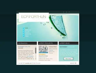 ECP And Forthun portfolio