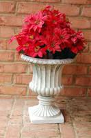 Poinsettia Urn 3