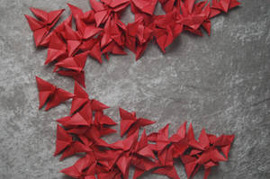 Origami Butterflies 2