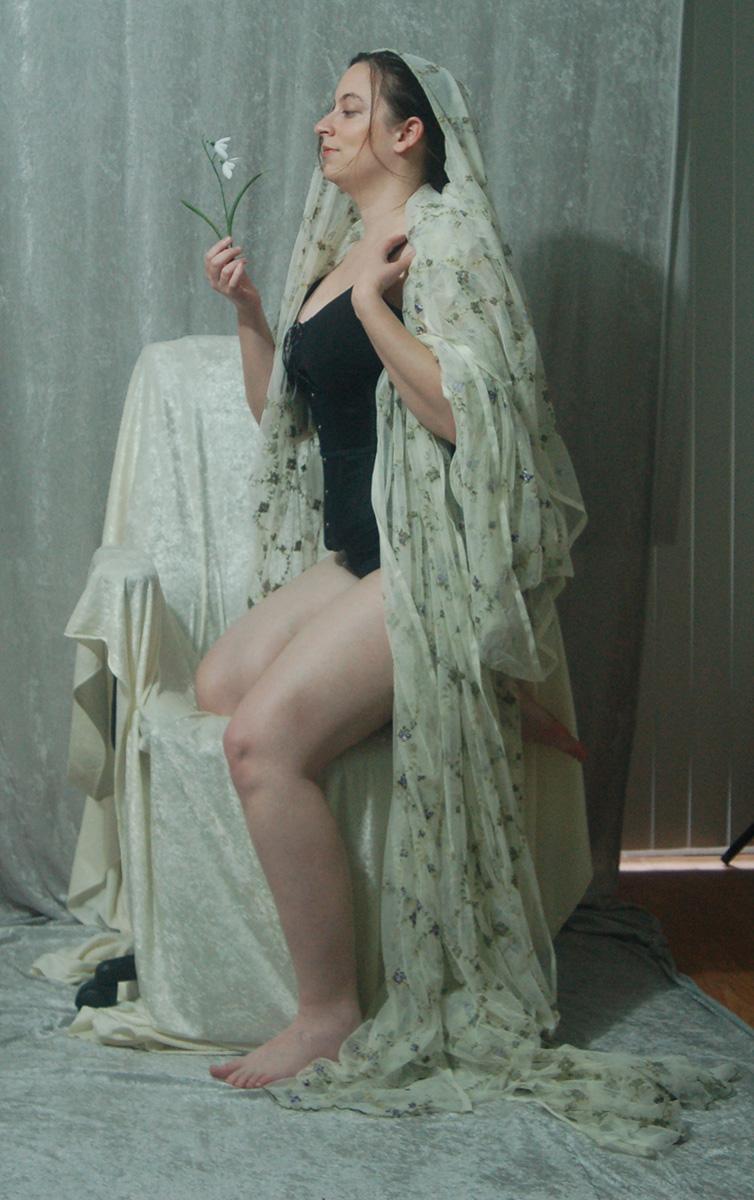Veiled Nouveau Lady 5