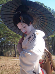 Geisha Parasol Dance 1