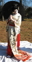 Geisha Parasol Dance 10 by themuseslibrary