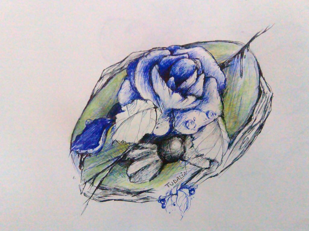 The Opal Blues by Tudalia