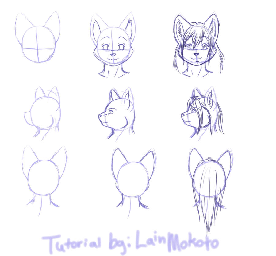 Tutorial: Anthro feline heads by LainMokoto
