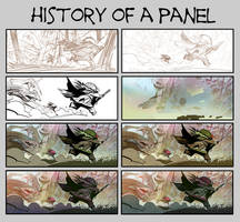 HISTORY OF A PANEL