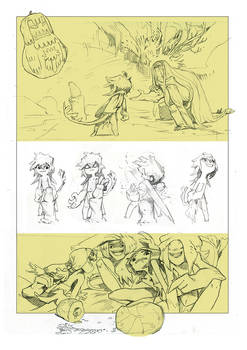 Rough page stage- NIMA