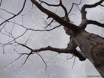 Lightning Tree by Linkachu72