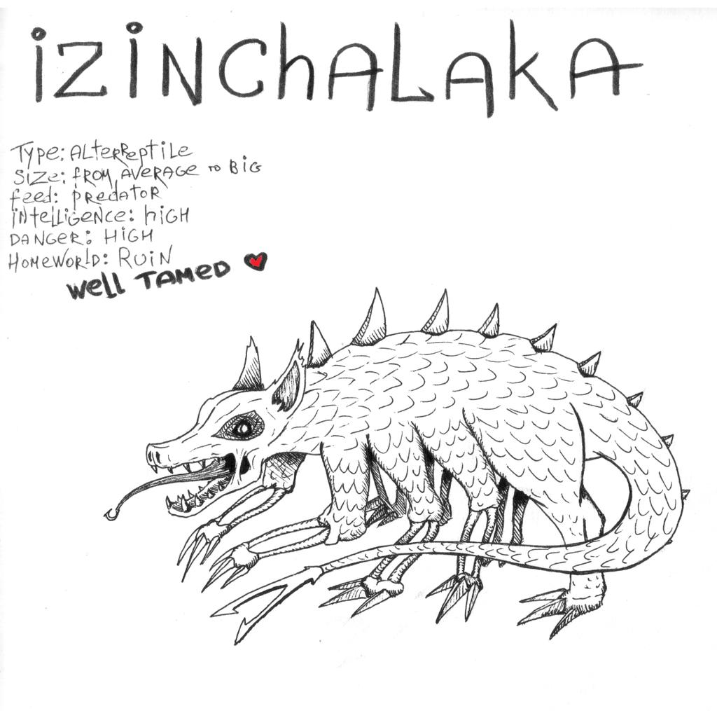 Izinchalaka by Djigallag