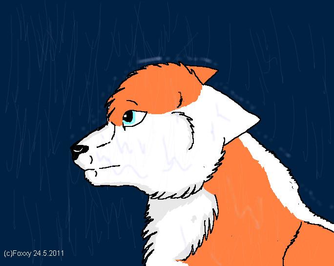 Sateen testailua :3